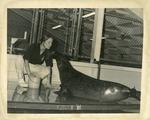 Andre at New England Aquarium