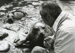 Harry and Andre Mystic Aquarium