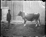 Monson, Rural Farm circa 1900 Glass plate 53