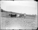 Monson, Rural Farm circa 1900 Glass plate 54