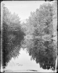 Monson, Rural Scenic circa 1900 Glass plate 61