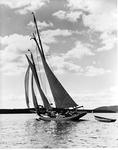 Sailboat Under Full Sail Off Mount Desert Island by George W. French