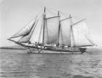 """Three Masted Schooner Under Full Sail And Loaded With Lumber (""""Rene Myrick"""" ?) by George W. French"""