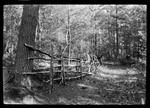 An Old Log Fence In The Woods by George French