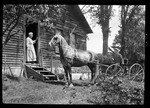 "Woman In Door Of House, Man In Buggy Outside ""- Fred & Ma-team"" by George French"