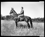 Man Sitting On A Horse, Herb by George French