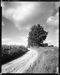 Road Goes Up By Row Of Trees And Alley's Farm On Right At Top Of Hill In Porter by George French