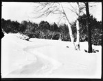 Snow On Ground Near A Home, Clough's--Kezar Falls by George French