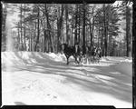 Group Of People On A Sleigh In Poland Spring by George W. French