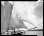 """Fore Sails And Jib Sails On The Schooner """"Mattie"""" Out Of Camden by George W. French"""