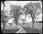 Blacktop Highway Past Farm And Fields In Limington by George French