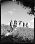 Group Of Boys Hiking Down A Hill In Jefferson by George French