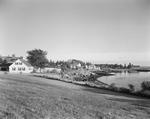 Houses Along The Shoreline At Pemaquid by George French