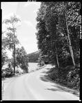 Highway Along Wooded Shore Of A Pond In Fryeburg by George French