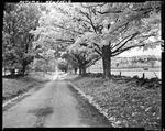A Country Road And Fall Foliage In Newfield by George French