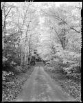 A Country Road In Fall At Limington by George French