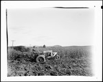 """Farmer Plowing Up Corn Stalks With An Old """"Silver King"""" Tractor by George French"""