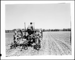 Farmer On Old Metal Wheeled Tractor Plowing Large Field In Fryeburg by George French