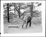 Deer Hunters Dragging Out A Ten Point Buck by George French