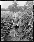 A Little Girl Holding Two Boxes Of Raspberries by George French