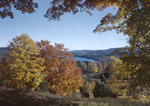 Distant Shot Of Long Pond In Parsonfield In Fall by George French
