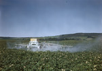 Worker Crop Dusting A Potato Field In Presque Isle by George French
