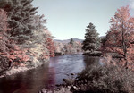 Fall Colors Along A Stream In Effingham, N.H. by George French