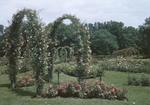 Elizabeth Park Rose Gardens In Hartford, Conn by George French
