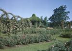 Elizabeth Park Rose Gardens Hartford, Conn by George French