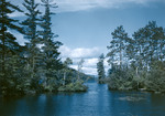 Blue Water And Trees Under Cloudy Skies by George French