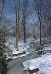 Winding Stream Through Snow Covered Woods by George French