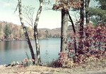 Fall Colors Around A Pond by George French