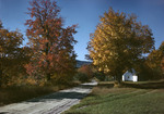 Fall Colors Along A Road by George French