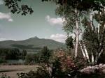 Chocorua Mountain And Fall Foliage by George French