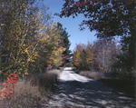 Fall Foliage Along A Country Road In Conway, New Hampshire by George French