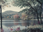 Fall Foliage Along A Pond In Eaton, New Hampshire by George French