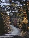 Fall Foliage Along A Country Road In Eaton, New Hampshire by George French