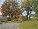 Fall Foliage Along A Country Road In Freedom, New Hampshire by George French