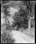 Off the Main Highway, Parsonsfield, Maine by George W. French