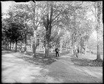 Campus Grounds And Pathways, Bates College, Lewiston by George French