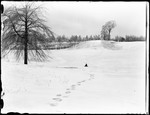 Child Sledding In A Snowy Field by George French