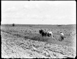 Farmer Plowing A Field With A Team Of Horses by George French