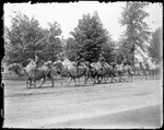 Camel Parade North Conway, Nh by George French