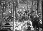Camp Meeting In The Woods At Baldwin by George French