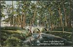 Rustic Bridge, Deering Oaks, Portland, ME