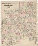 Timber Lands No.6