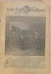 Turf, Farm and Home- Vol. 16, No. 22 - December 1, 1893