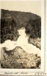 Ripogenus Gorge, 1928 (L.M.G.) by David Field