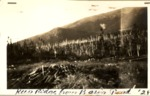 Keep Ridge from Basin Pond, 1928 by David Field