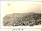 Tableland, 1928 (L.M.G.) by David Field